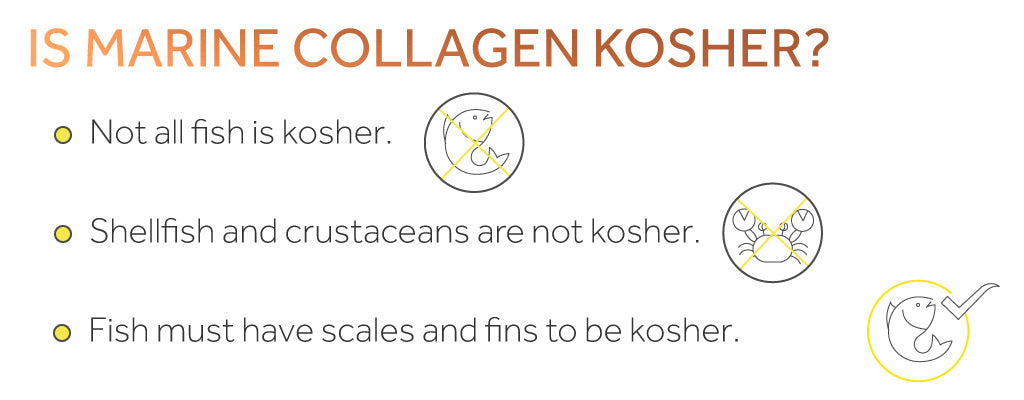 Infographic showing how some marine collagen is not kosher