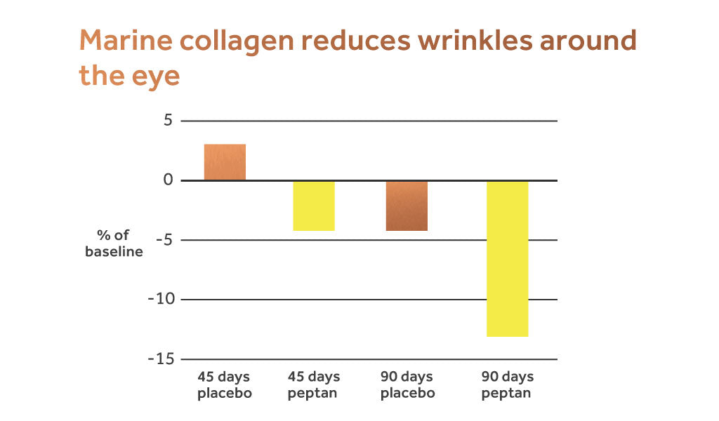 Image showing how taking peptan collagen for wrinkles produces a positive effect within 90 days.