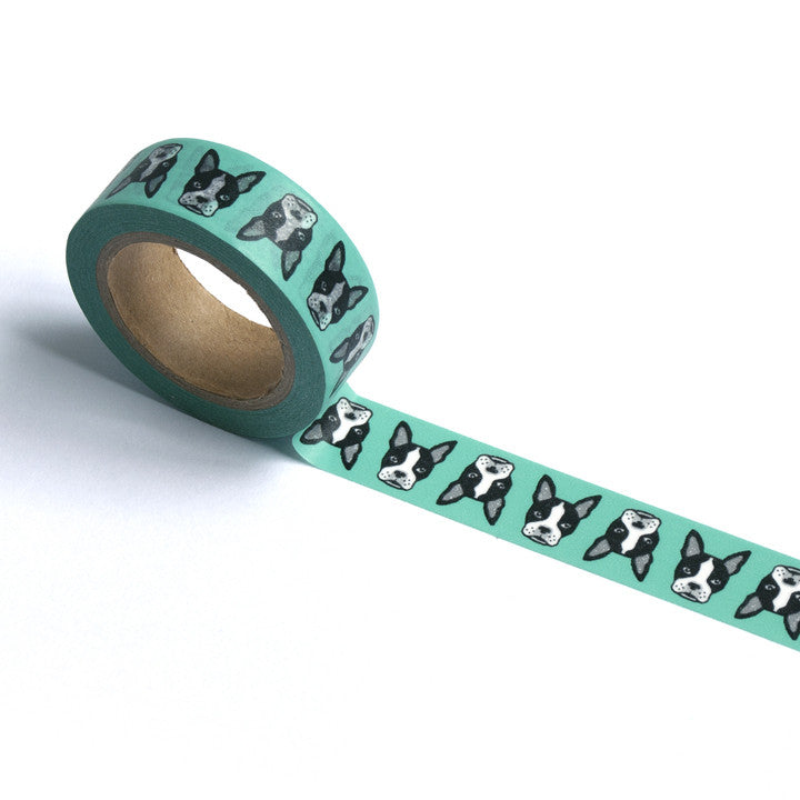 Boston Washi Tape in Sea Foam
