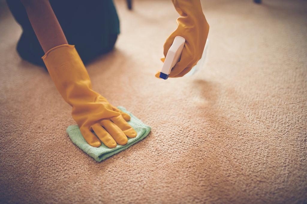Remarkable Homemade Carpet Cleaner