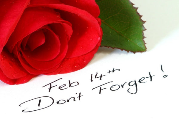 Forget Me Not: A Valentine's Day Warning
