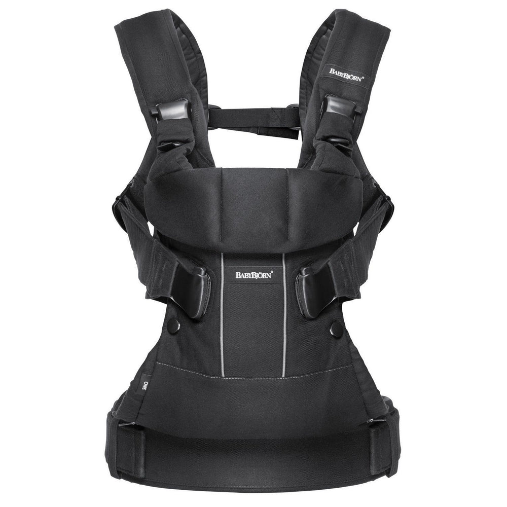 Baby Carrier One