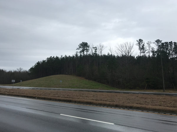 75+/- Acres in Pickens County