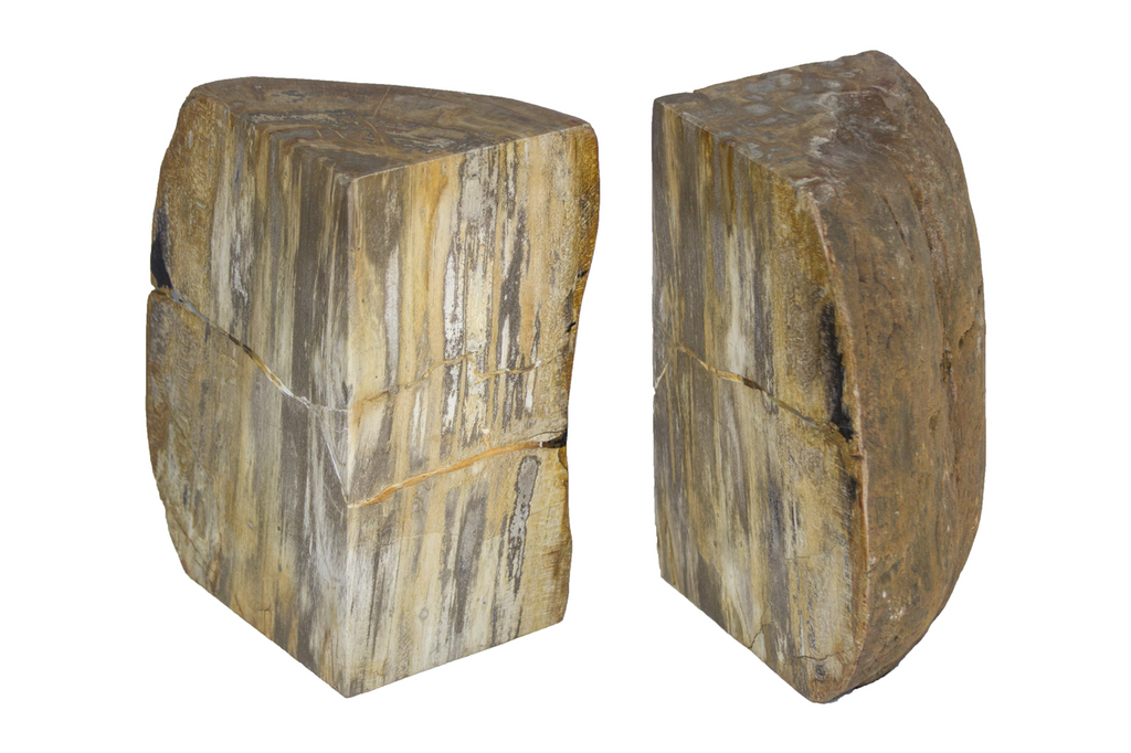 Pair Petrified Wood Bookends