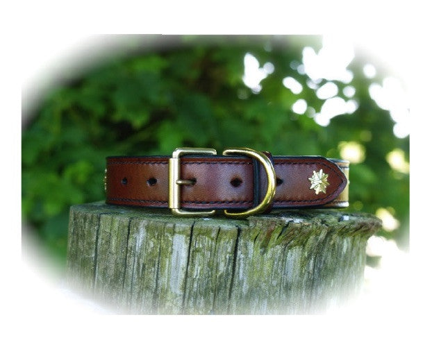 Decorated Luxury Dog Collar - 'The Oak' - Vaux & James