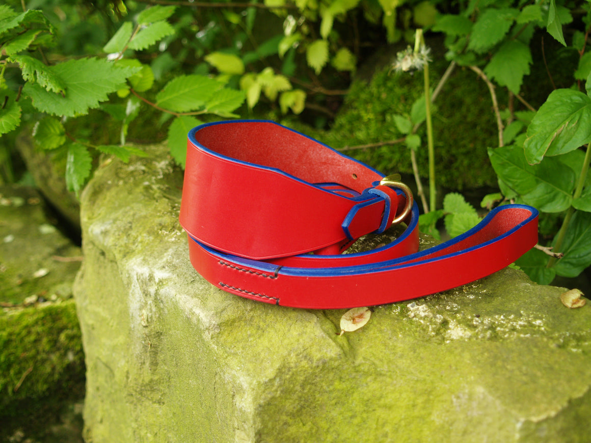 Red leather Lurcher Collar & Lead Set - Red with Blue Edge