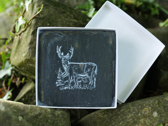 Country Cuties Slate Coasters