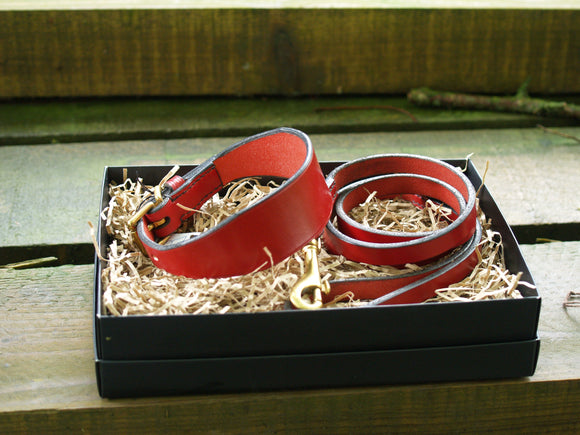 leather whippet collar & lead set