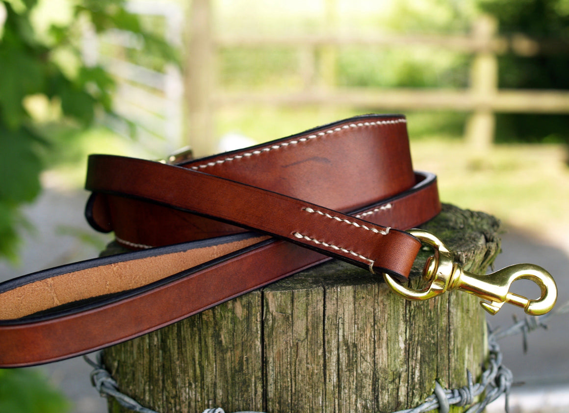 Contrast Stitched Collar & Lead Set