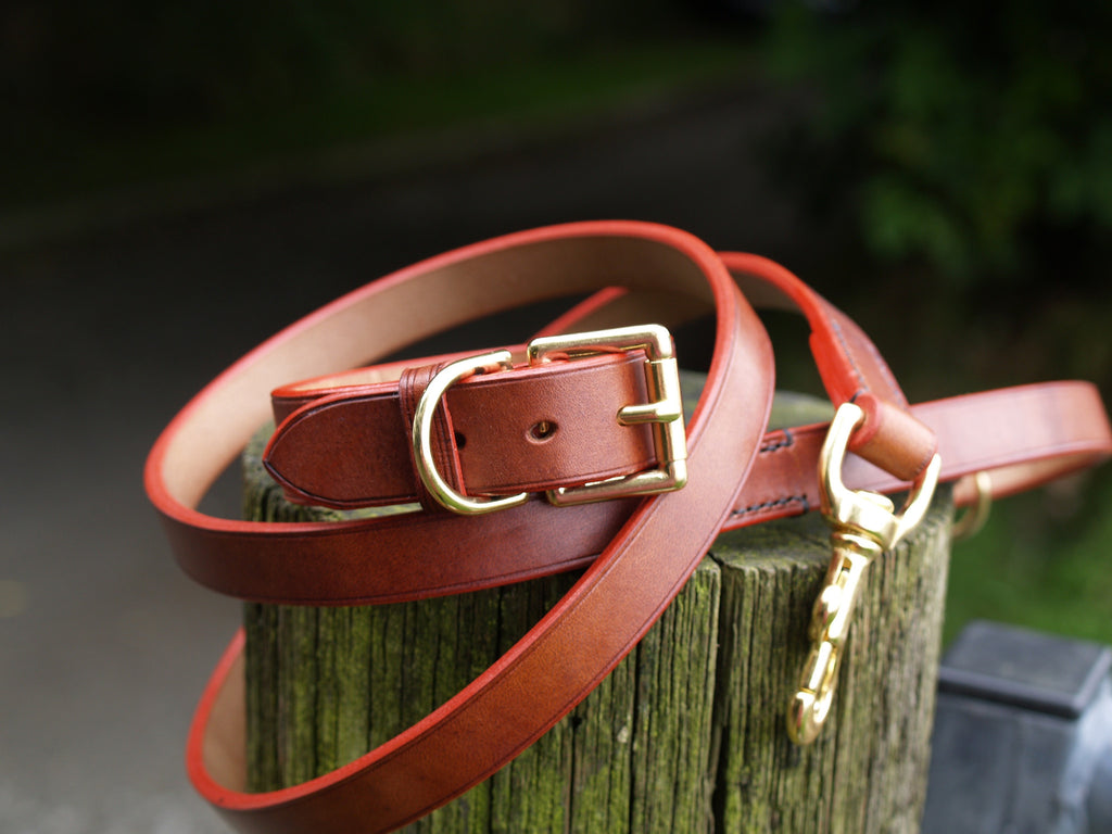 Dog Lead - Custom Colour Edging