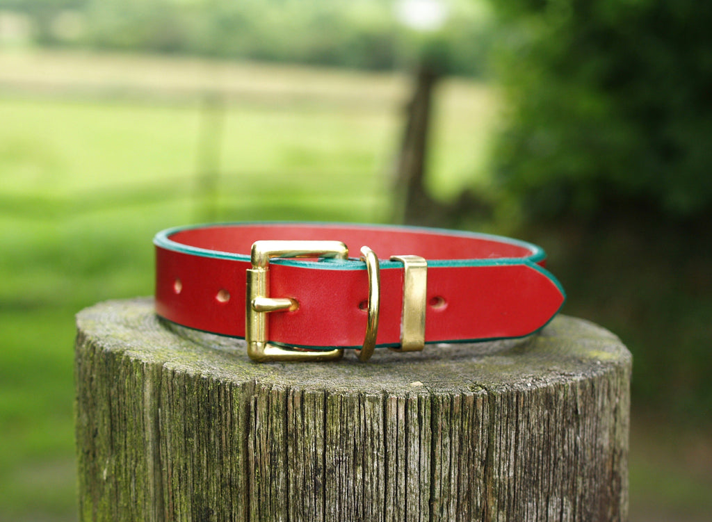 Red Dog Collar with Green Edging