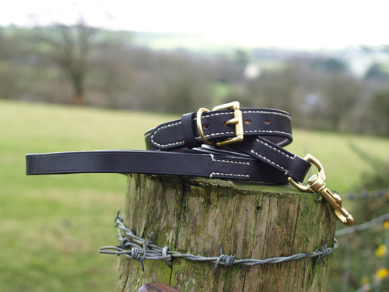 Lined Dog Collar & Lead Set