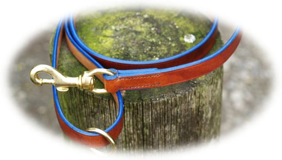 Dog Lead - Blue Edge