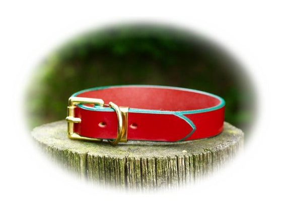 Dog Collar - Custom Colour Edge