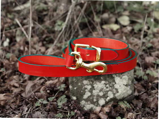 Red Leather Collar & Lead Set - Green Edge