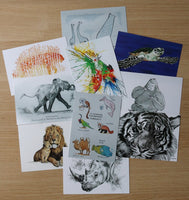 Sketch for Survival postcards - Set of 10