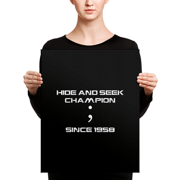 Hide and Seek (canvas) - Programming Tshirt, Hoodie, Longsleeve, Caps, Case - Tee++