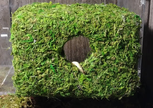 Magnetic Mossy Hide