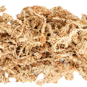 Golden Sphagnum Moss - 1/3lb bag