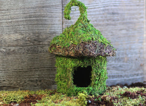 Bungalow Hide - 6×7""