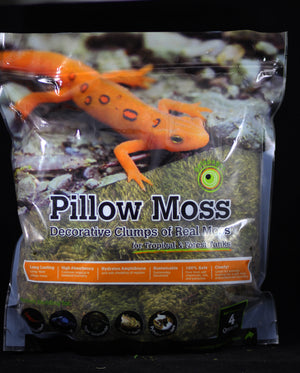 Pillow Moss 4qt