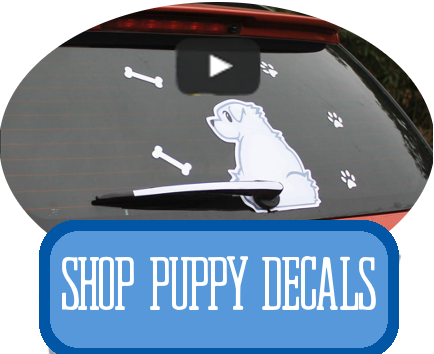 puppy decals at i love cat socks