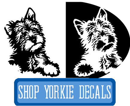 yorkie decals at i love cat socks