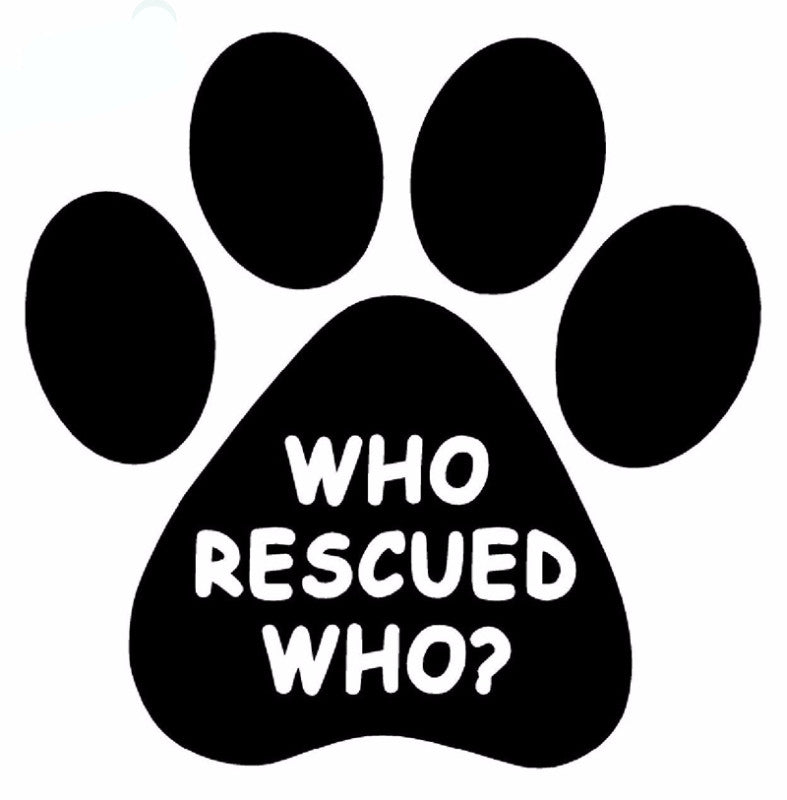 Who Rescued Who Cat Car Decal