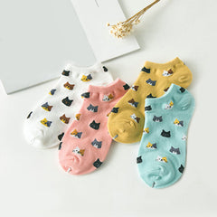 Colorful Candy Cat Socks