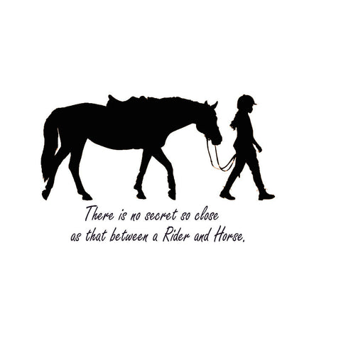 Rider And Horse Secret Wall Sticker
