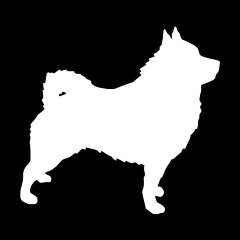 Image of Schipperke Dog  Car Decal