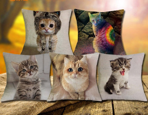 Adorable Printed Cat Pillow Case