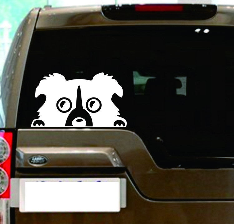 Peeking Collie Dog Car Decal