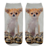 Cute Puppies Design Socks