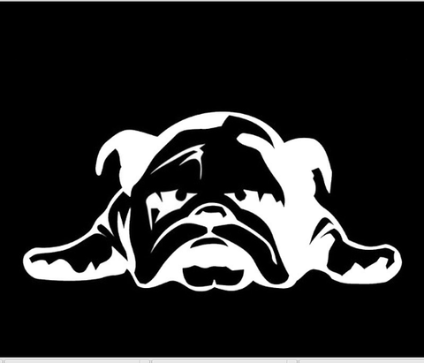 English Bulldog Car Decal - I Love Cat Socks