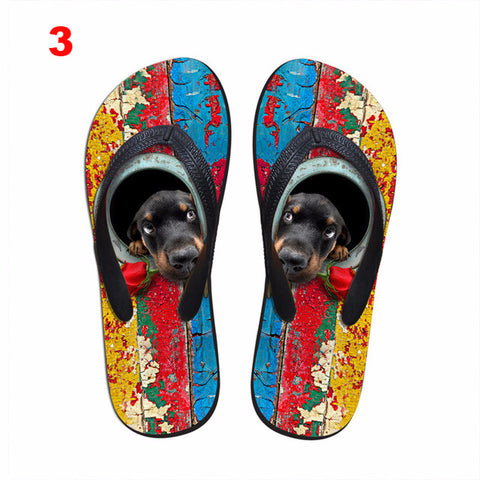 Image of Colorful Dog Flip Flops - I Love Cat Socks
