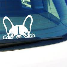 Peeking Puppy Car Decal