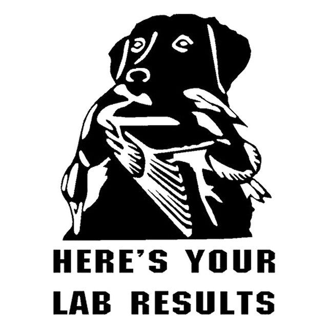Here's Your Labrador Dog Car Decal