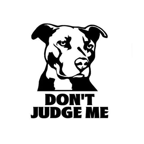 Don't Judge Me Dog Car Decal - I Love Cat Socks
