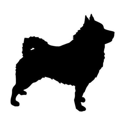 Schipperke Dog  Car Decal
