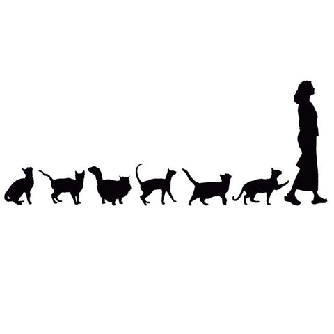 Cat Following Woman Car Decal - I Love Cat Socks