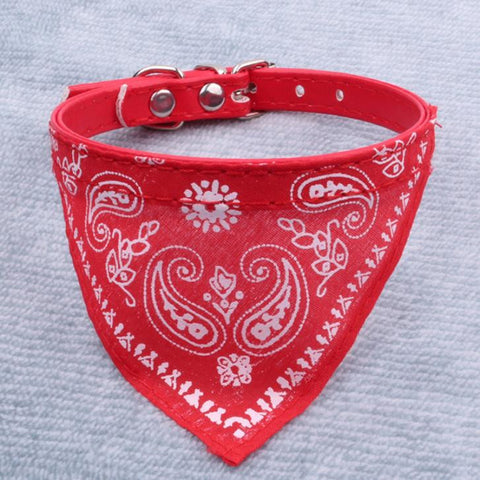 Image of Cat And Dog Scarf Collar - I Love Cat Socks