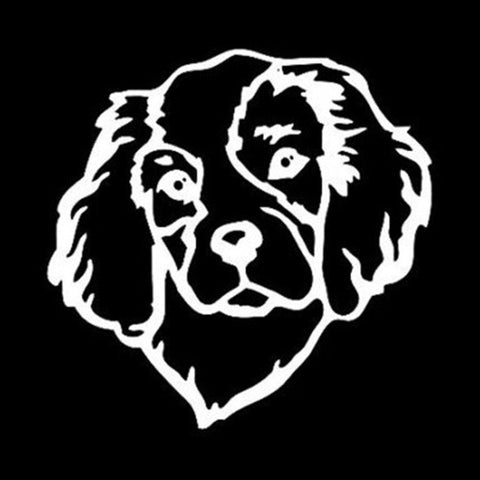 Image of Cavalier Head Dog Car Decal - I Love Cat Socks