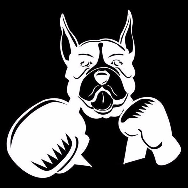 Cute Boxer Dog with Boxing Gloves Car Decal - I Love Cat Socks