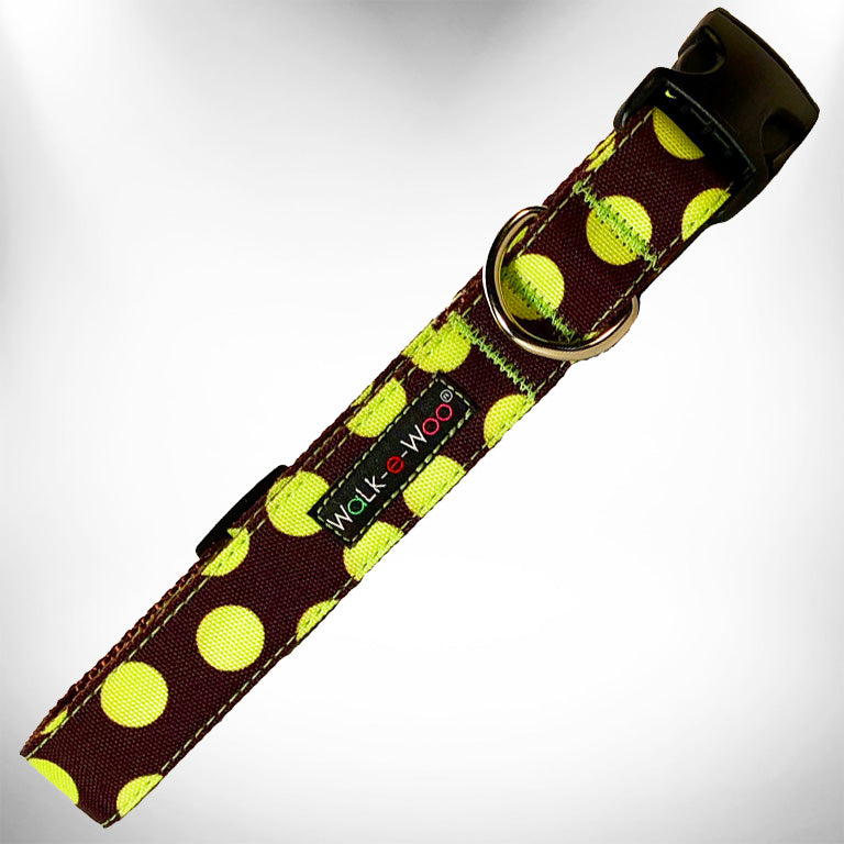 Green Polka Dot on Brown Dog Collar Cute Stylish Boy Designer