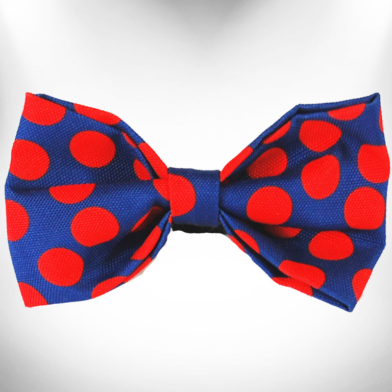 Red Polka Dot on Blue Doggie Bow Tie