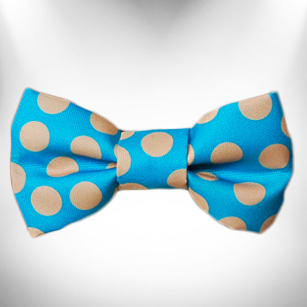 Tan Polka Dot on Turquoise Doggie Bow Tie