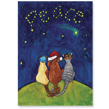 Stars of Peace Holiday Cards