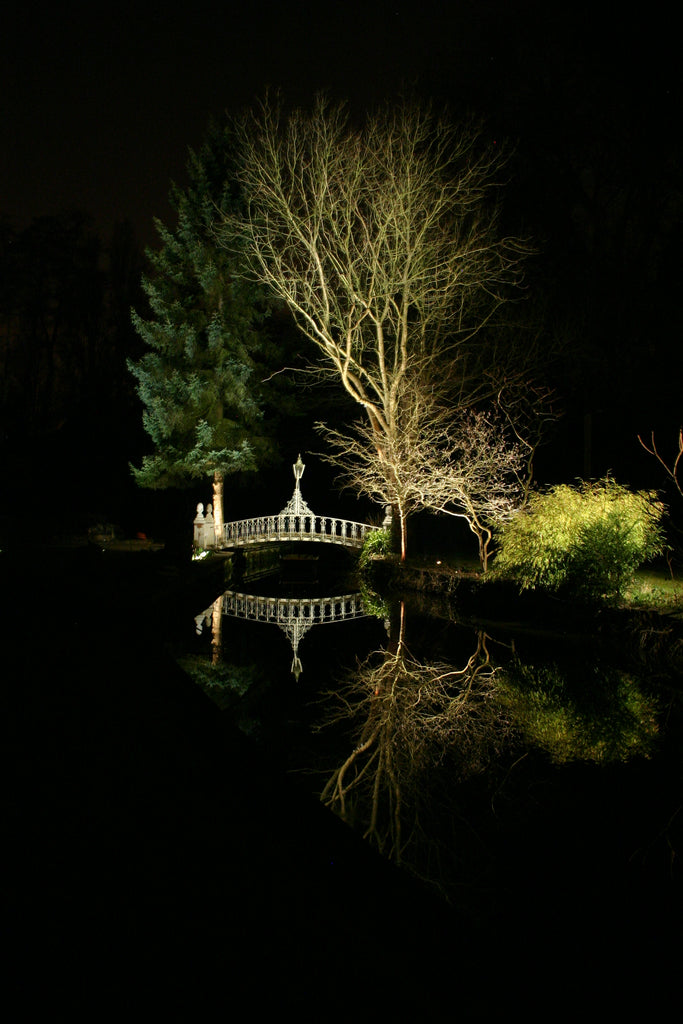 Garden lighting water trees and bridge reflections - Neil Parslow - Light Visuals