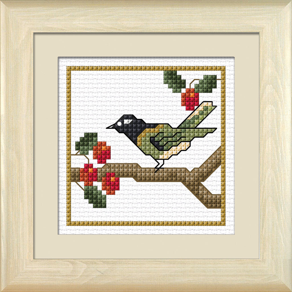 Hihi, the Stitchbird